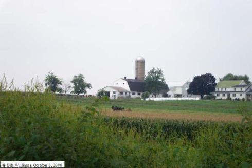 amish-farmer-by-bill-williams.JPG