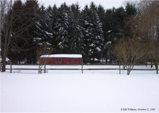 snowy-backyard-by-bill-williams-2.JPG